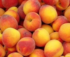 Peaches, Apricots